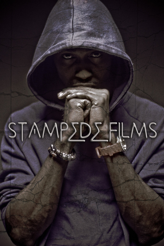 Stampede Films | AceWorldTeam.com
