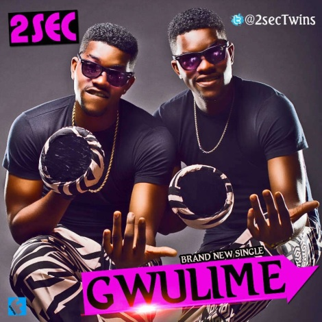 2Sec - GWULIME Artwork | AceWorldTeam.com