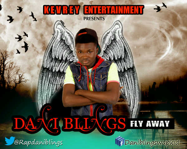 Dani Blings - FLY AWAY Artwork | AceWorldTeam.com