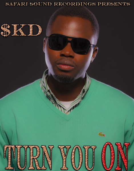 SoundKnockDown a.k.a SKD - TURN YOU ON Artwork | AceWorldTeam.com