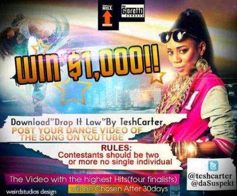 Tesh Carter - DROP IT LOW [rated 18+] Artwork   AceWorldTeam.com